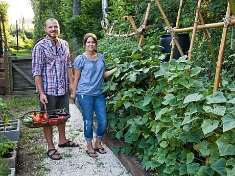 Cum amenajezi o gradina de legume ?