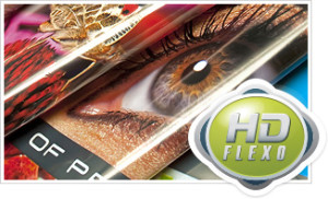 Where to look for flexographic printing companies in Us?